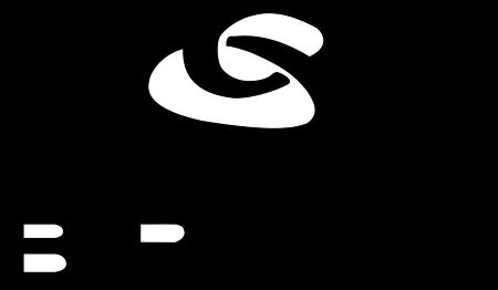 Logo breil